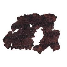 One of APU's five Dead Sea Scroll Fragments: Deuteronomy 27